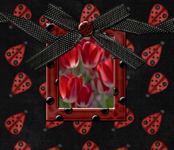 Red & Black Ladybug Wallpaper - Pretty Tulips Background
