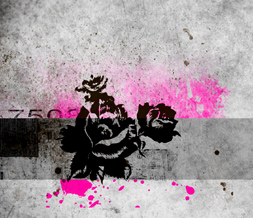 Pink & Black Grunge Rose Wallpaper - Grunge Background with Flower