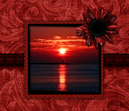 Red Sunset Wallpaper Download - Red Sunflower Background