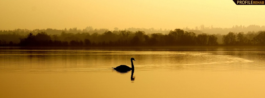 Gold Lake with Swan Facebook Cover