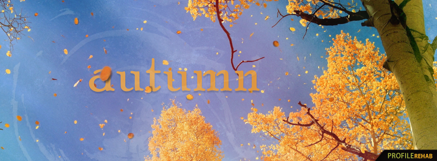 Tree with Falling Leaves Images - Autumn Leaves Falling - Autumn Facebook Covers