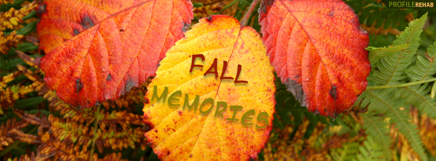 Fall Memories Facebook Cover - Pretty Fall Photo - Beautiful Autumn Image