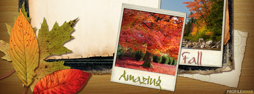Amazing Fall Facebook Cover - Autumn Pictures for Facebook - Beautiful Autumn Pictures