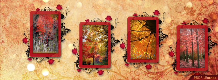 Fall Leaves Cover Photos for Facebook - Autumn Tree Pictures