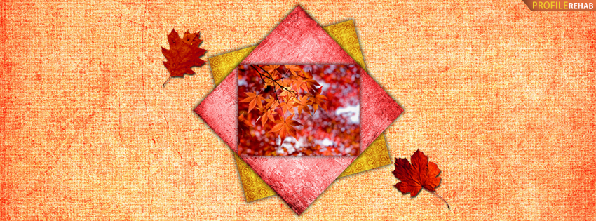 Colorful Fall Leaves Facebook Cover - Picture of Fall - Autumn Picture
