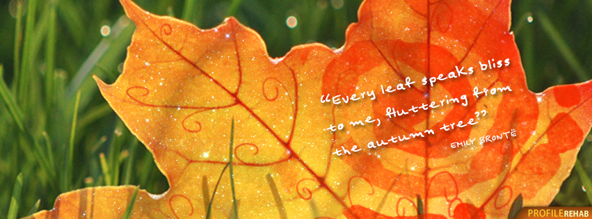 Short Fall Quotes Facebook Cover - Fall Season Quotes - Images of Autumn Quote