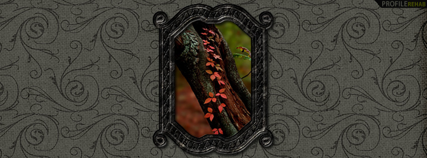 Elegant Fall Ivy Facebook Cover - Pretty Fall Pictures - Fall Leaves Photography