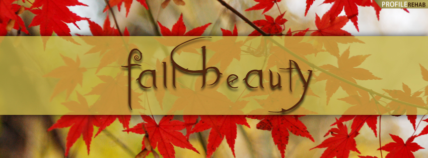 Fall Beauty Facebook Cover - Fall Cover Pictures for Facebook