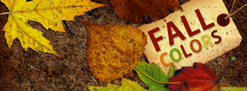 Fall Colors Quote Facebook Cover - Images of Fall Colors Text - Unique Pics of Fall
