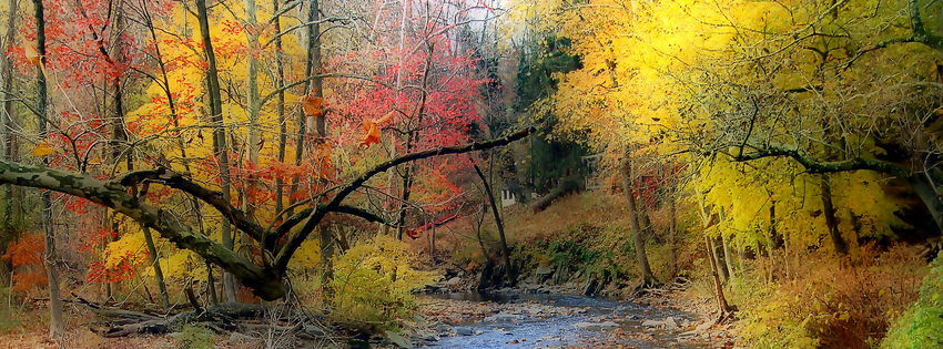 Fall Stream Facebook Cover - Pretty Autumn Landscapes - Fall Landscape Pictures Preview