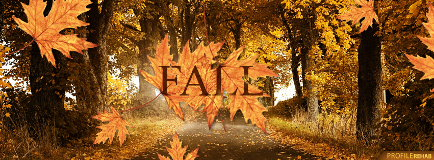 Beautiful Fall Leaves Pictures for Facebook Cover - Autumn Facebook Cover