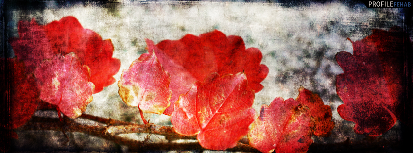 Grunge Fall Leaves Facebook Cover - Grunge Fall FB Covers - Beautiful Autumn Images free