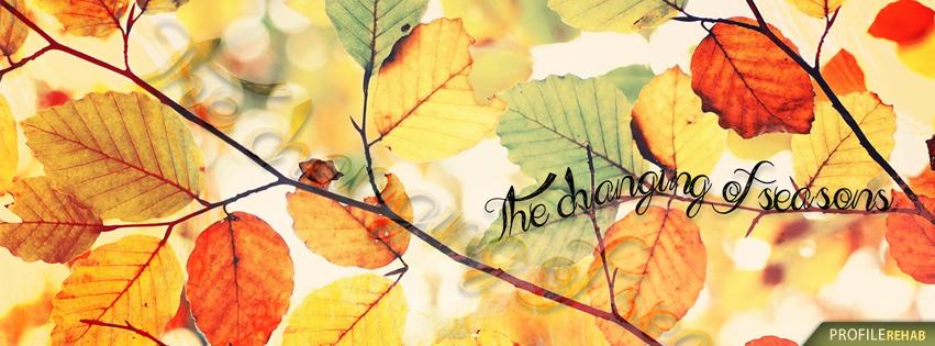 Changing of Seasons Fall Quote Image - Pretty Fall Image - Beautiful Autumn Photo