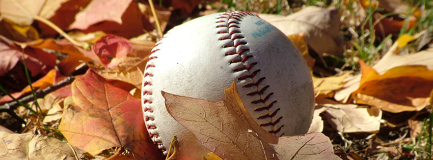 Baseball in Leaves Facebook Cover