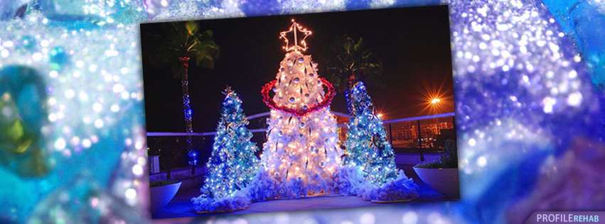 Pretty Christmas Trees Images for Facebook Timeline