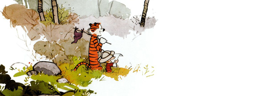 Calvin and Hobbs Cover for Facebook Timeline