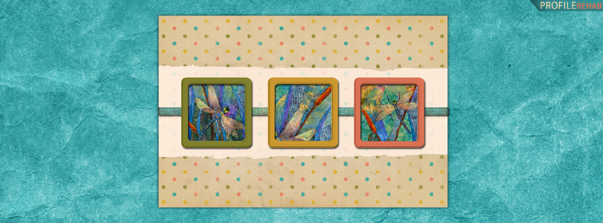 Colorful Polkadot Dragonfly Facebook Cover for Timeline