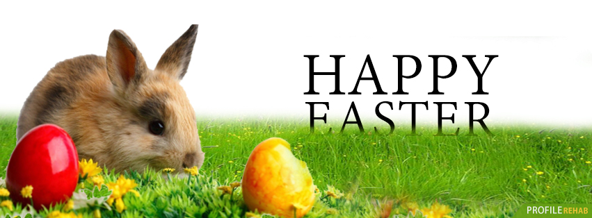 Easter Bunny Photos - Easter Bunny Images Free