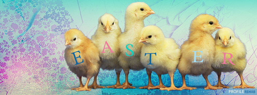 Easter Chick Pictures - Cute Easter Chick Images Preview