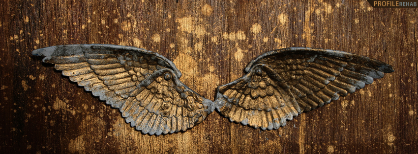 Grunge Wings Facebook Cover