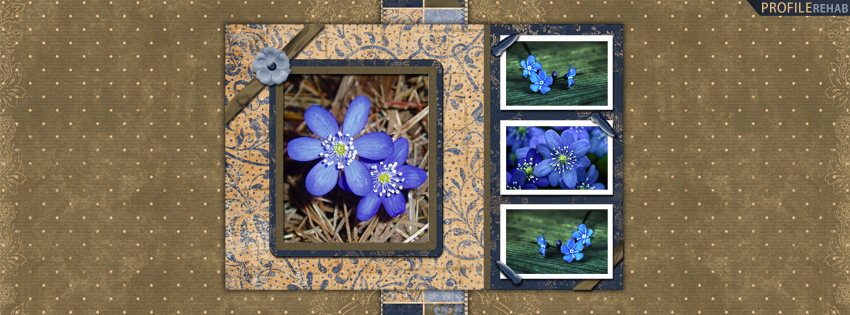 Blue & Yellow Flowers Facebook Cover for Timeline
