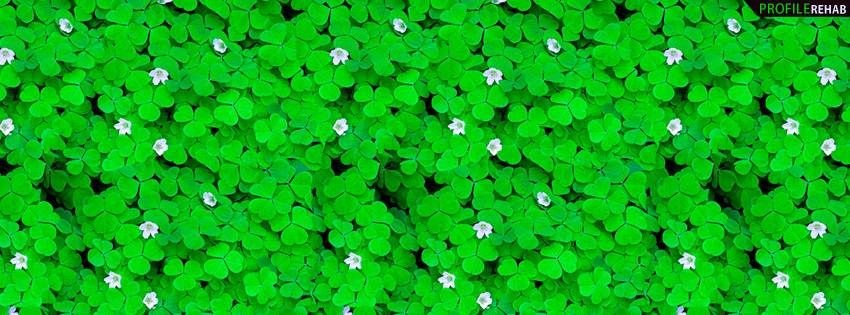 Green Clovers Facebook Cover - St Patrick Day Images Pictures