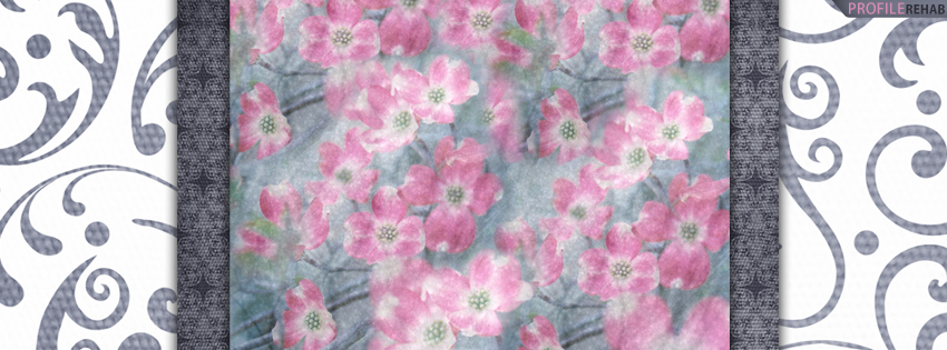 Pink Dogwood Flowers Cover for Facebook Timeline