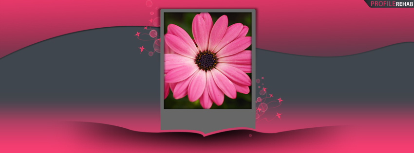 Grey & Pink Flower Facebook Cover for Timeline