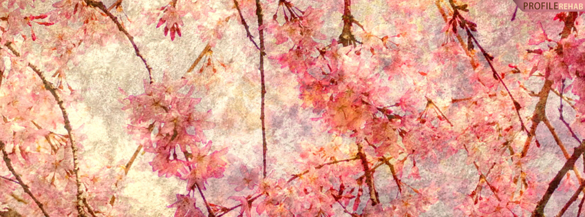 Pink Rustic Flowers Facebook Cover Preview