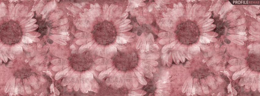 Pink Sunflowers Facebook Cover