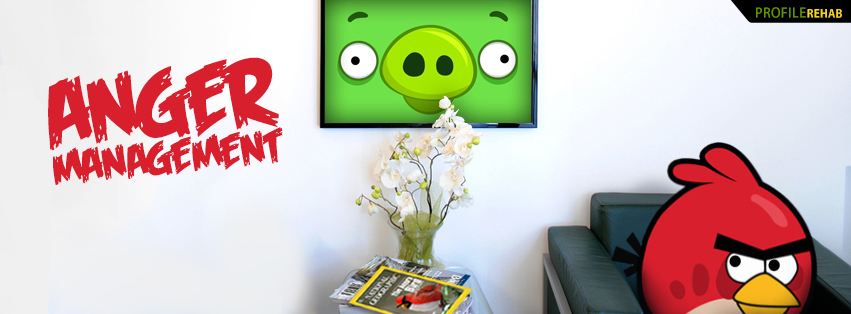 Angry Birds Anger Management Facebook Cover