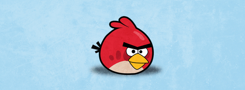 Red Angry Bird Facebook Cover