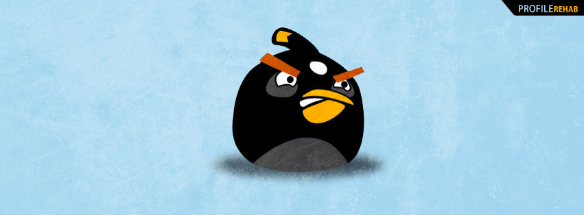 Black Angry Bird Facebook Cover