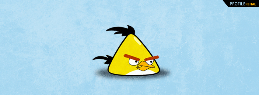 Yellow Angry Bird Facebook Cover