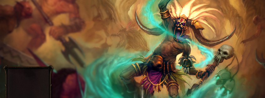 Diablo 3 Witch Doctor Facebook Cover