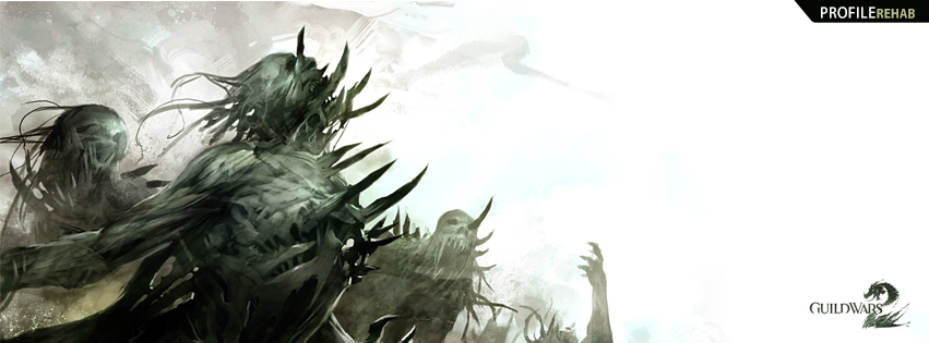 Guild Wars 2 Art Facebook Cover