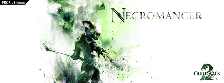 Guild Wars 2 Necromancer Facebook Cover