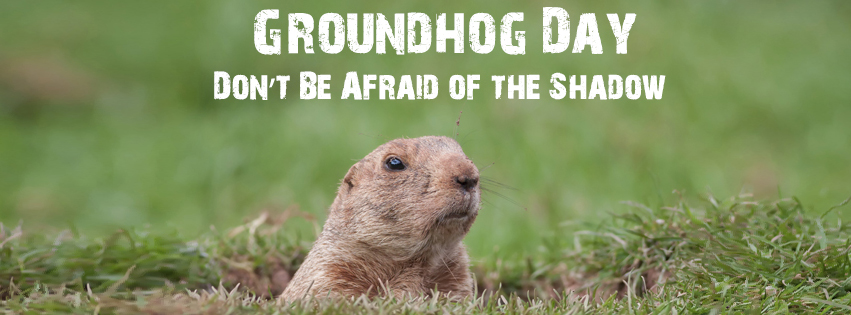 Picture of Groundhog - Groundhog Images - Pictures of Groundhogs - Images of Groundhogs