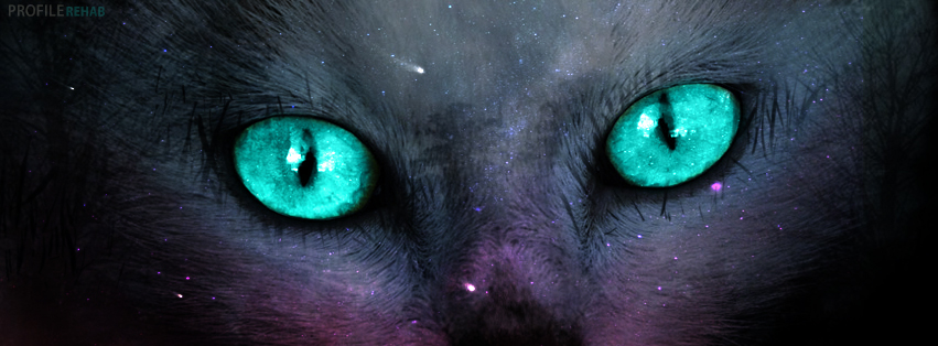 Cat Eyes Facebook Cover - Halloween Cat Pictures -Halloween Cat Images