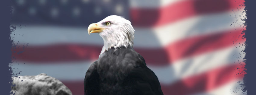 Patriotic Bald Eagle Facebook Cover