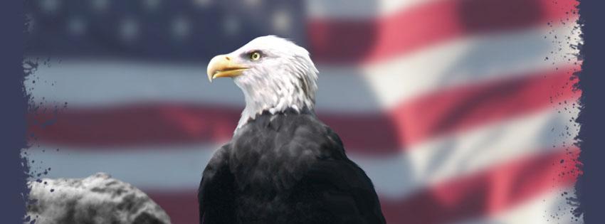Patriotic Bald Eagle Facebook Cover