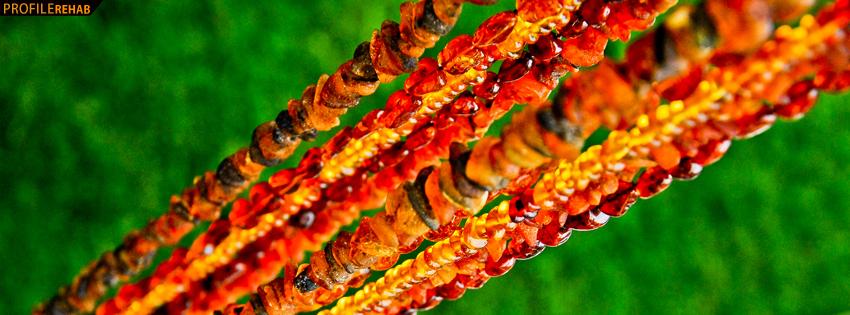 Orange Beads Facebook Cover