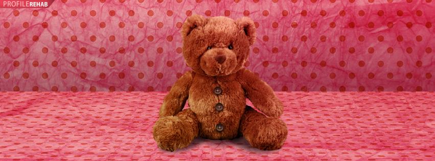 Teddy Bear Timeline Cover