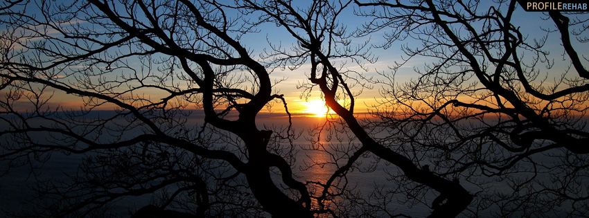 Sunset Through Trees Facebook Cover Preview