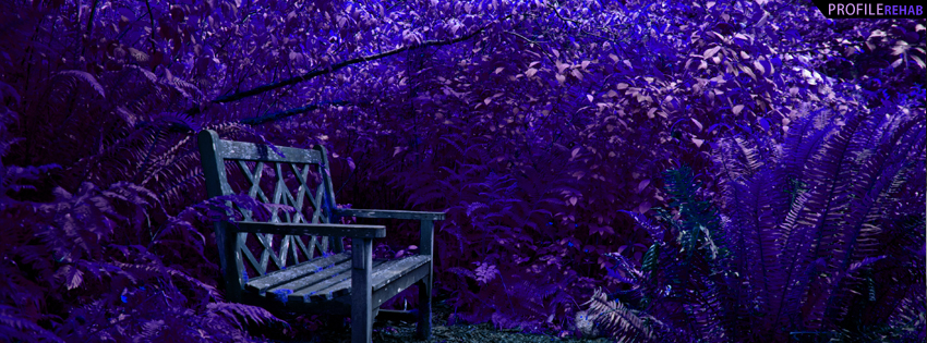 Forest Bench in Moonlight Facebook Cover