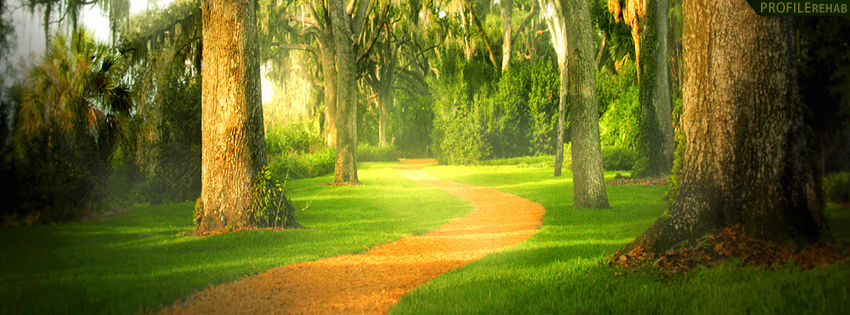 Scenic Forest Path Facebook Cover for Timeline Preview