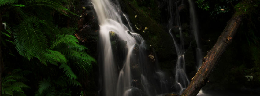 Green Forest Waterfall Facebook Cover