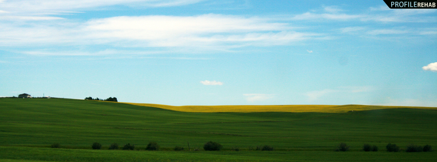 Beautiful Green and Yellow Meadow Facebook Cover - Flower Field