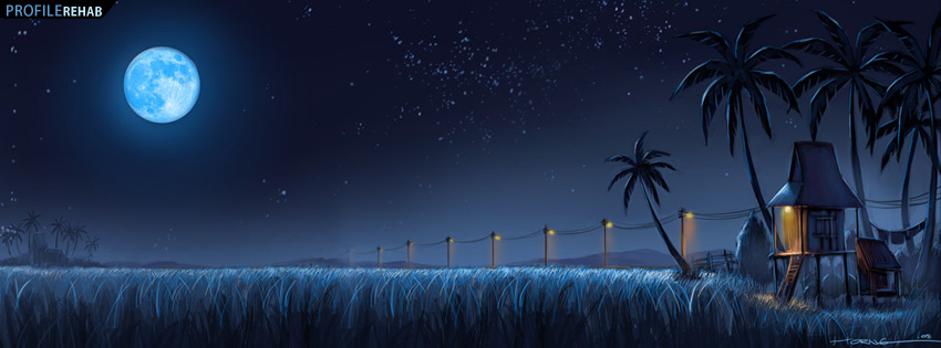 Palm Trees Under the Moon Facebook Cover
