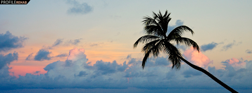 Beautiful Palm Tree in Sunset Facebook Cover